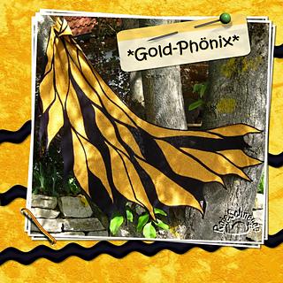 140522_phoenix_small2