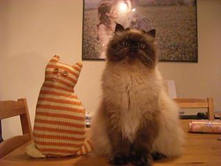 Window_cat_small2