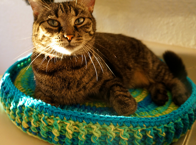Ravelry Technicolor Cat Bed Pattern By Dankfiber