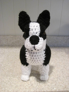 Boston_terrier_front_small2