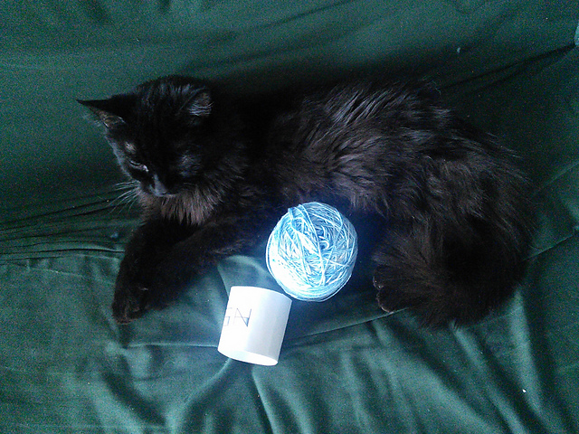 A black fluffy cat curled around a wound up ball of yarn.  The cat looks to be asleep.