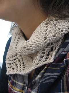 Schindler_s_cowl_3_small2