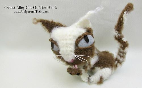 Cute-kitty_medium