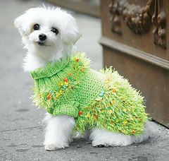 Crazy_green_dog_sweater_small