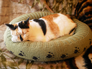 Dog_cat_bed_shiri_designs_02_11_main_small2