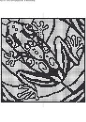 Spiritfrogsq_1_small