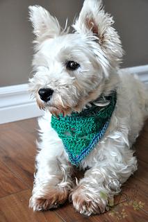 Rigby_scarf1_small2
