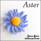 Aster_square_small_best_fit