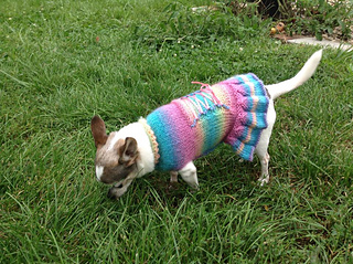 ravelry dog corset dress patternsarah wesemann