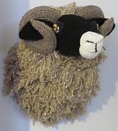 Sheep_005_small_best_fit