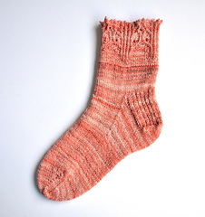 Reynard_sock___1_done-1_small