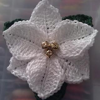Ravelry Poinsettia Christmas Flower Pattern By Celia