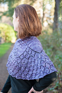 Melissa_s_shawl__35_of_48__small2