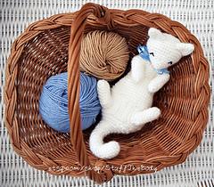 Kitten3_small