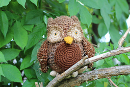 Owl_small_best_fit