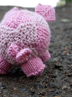 Pig5lowres_small2