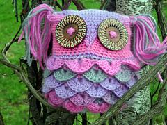 Owl2_small