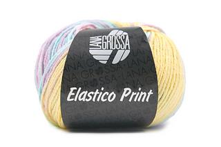 Elastico_print_cover_small2