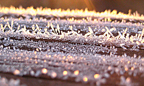 Frost_railing_4_blog_medium