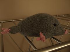 Mole1_small