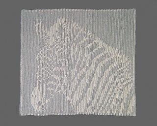 Zebra_back_800_small2