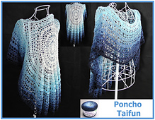 Poncho_taifun_collage_small_best_fit