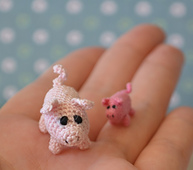Piggies_01_small_best_fit