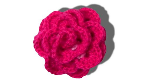 Rose_hakelanleitung_thumbnail_medium