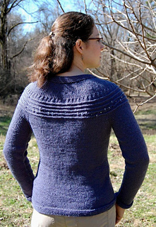 Sweater_back_small2