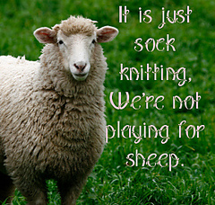 Sheep425_copy_small
