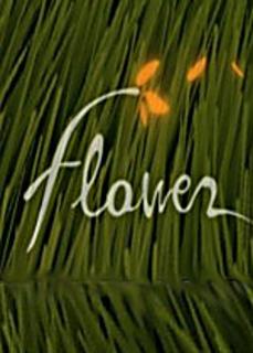 Beaten_flower_small2