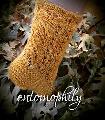 Entomophily_sock_small