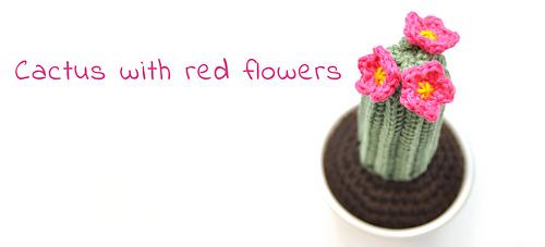 En-cactus-red-flowers_medium