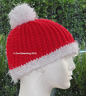 Santa_beanie_with_cr_small_best_fit