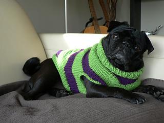 Ravelry Pug Dog Sweater Pattern By Angelcatkins Elizabeth Watkins