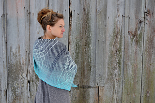 Asymmetrical_shawls__four__gansey_crescent_shawl__lopi_mittens__candy_mittens_2016-12-07_070_small2