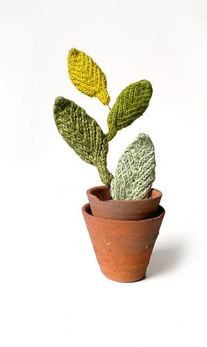 Leaves_in_pot_medium