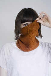 Plucky_cowl13_small_best_fit