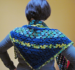 Shawlback_small