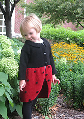 Ladybug_01_small_best_fit