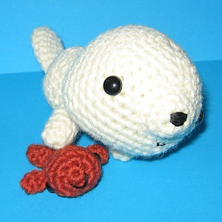 Baby_seal_small2