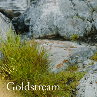 20170608_goldstream_spoiler_small2