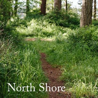 20170608_north_shore_spoiler_small2