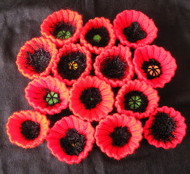 Ravelry blue heathers ribbed knitted poppies for chelsea mightylinksfo