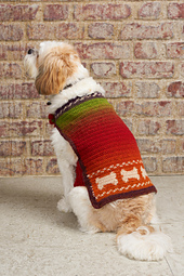 Crochet-dog-coat-simply-crochet_small_best_fit