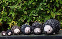 Hedgies2_small_best_fit