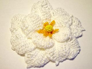 Gardenia_pattern_small2