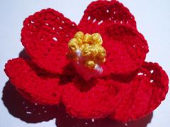 Camellia_jap_r1_small