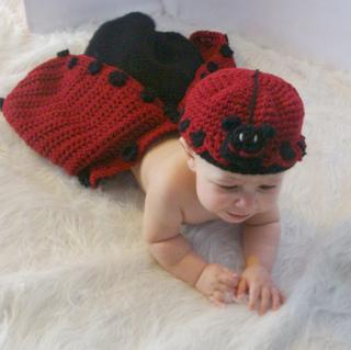 Ladybug_cocoon_3_small2