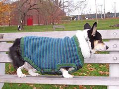Rileysweater3_small